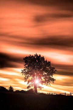 Zonsondergang in de Ardennen. van