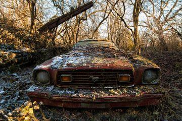 Ford mustang 1 van romario rondelez