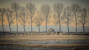 Natuurgebied Moerputten Den Bosch van HvNunenfoto