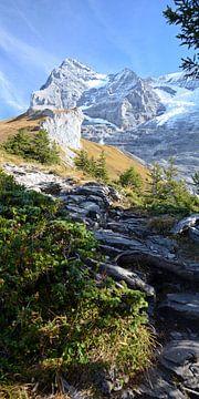 Hikingtrail van Bettina Schnittert