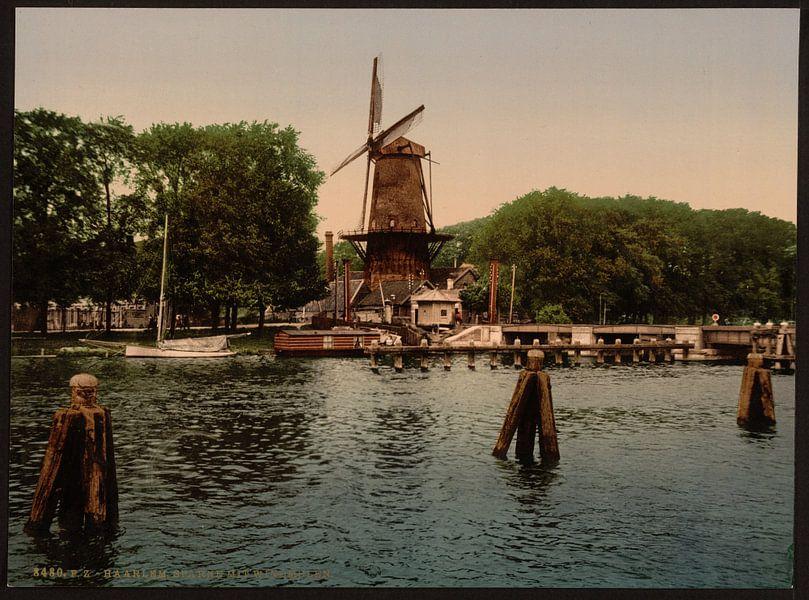 Molen en Spaarne, Haarlem van Vintage Afbeeldingen