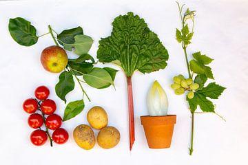Vers groente en fruit van Hilda Weges