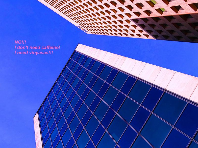 Small Talk: I Need Vinyasas! van MoArt (Maurice Heuts)