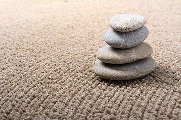 mini Japanse zen tuin van Peter Hermus