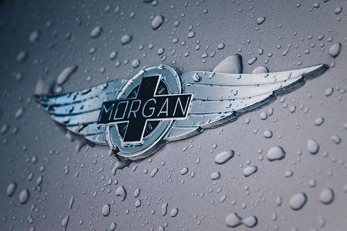 Morgan logo met regendruppels
