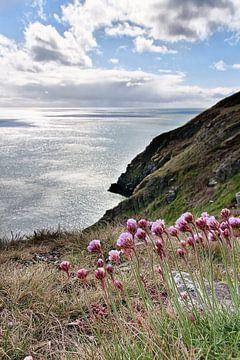 De ruige Ierse kust bij Dublin von Arie Storm