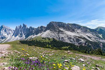 Dolomieten Zuid-Tirol van Martina Weidner