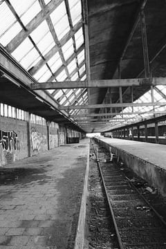 Lines van Femke Krone