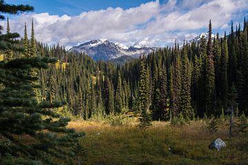 Canadees landschap met bergen, bos en blauwe lucht von Milou Mouchart