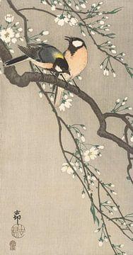 Super Nichons sur la branche fleurie de Ohara Koson