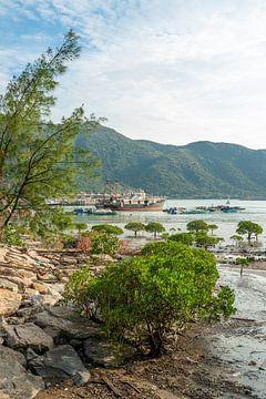 Zeelandschap en boten in Tai O van Mickéle Godderis