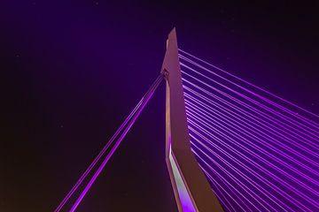 Le pont Erasmus Rotterdam sur Arisca van 't Hof