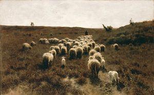 Terugkeer van de kudde, Anton Mauve