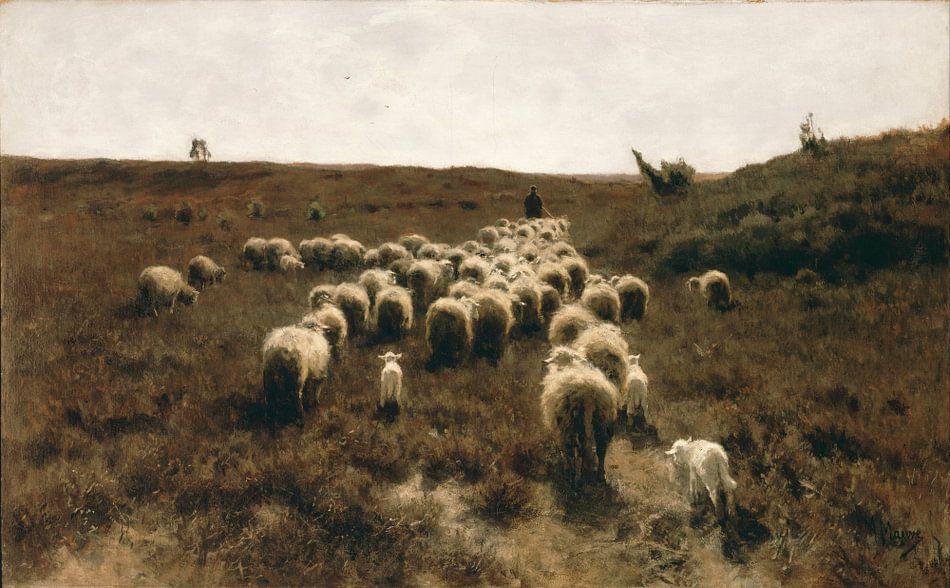 Terugkeer van de kudde, Anton Mauve van Meesterlijcke Meesters