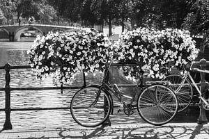 Bloemen op de brug