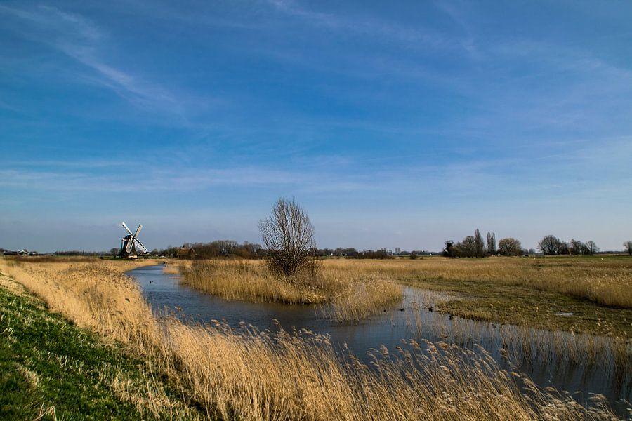 Lente in Groningen van Harry Stok