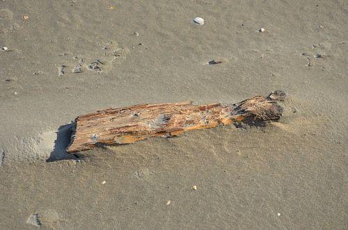 Aangespoeld hout van Op Het Strand