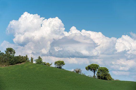 Blauw, wit, groen van Wim Slootweg