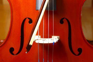 Cello van Thomas Jäger