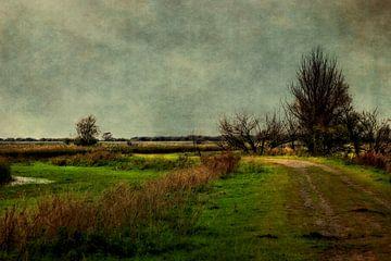 Bewolkte dag in de polder von Annie Snel