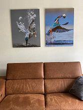 Klantfoto: Vissende ijsvogel van Tariq La Brijn, op aluminium