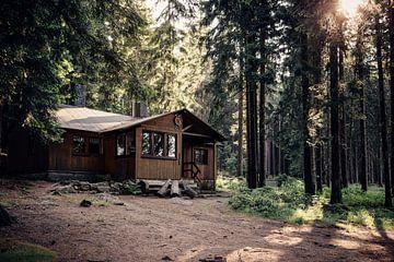 Waldhütte van Oliver Henze