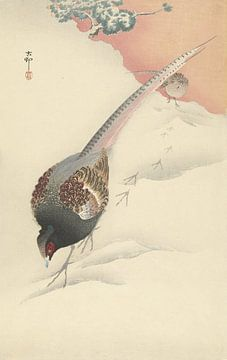 Fazantenkoppel in de sneeuw van Ohara Koson