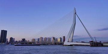 Erasmusbrug - Rotterdam van Gerard Van Delft