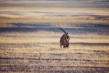 Der Samurai von Aus von Joris Pannemans - Loris Photography