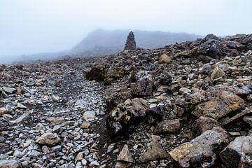 Op weg naar de top (Ben Nevis, Schotland) van Paul van Putten