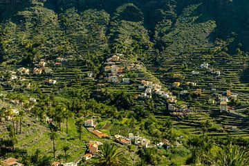 Palmarejo in Valle Gran Rey