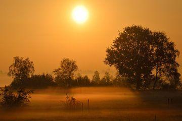 Zonsopgang zomer Nederland Twente von Petra De Jonge