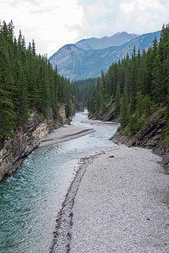 Rivière dans le parc national de Banff, Canada sur Sofie Bogaert