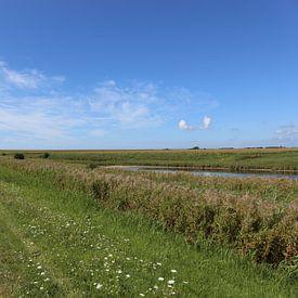 Blauer Himmel über der grünen Insel Pellworm von Christine aka stine1