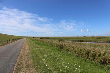 Ciel bleu au-dessus de l'île verte Pellworm