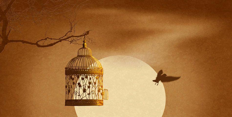 De ontsnapping uit de gouden kooi
