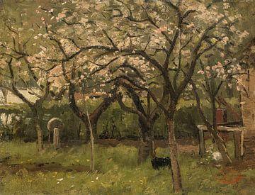 Blühender Baum im Obstgarten - Geo Poggenbeek