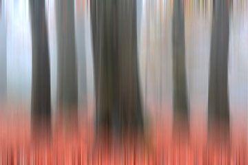 Omfloerste bomen van Franke de Jong