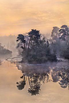 Daybreak met oranje hemel weerspiegeld in een mistige meer van Tony Vingerhoets