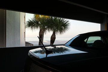 Miami, Palmen am Strand mit Spiegelung im Kofferraum von Ruurd Dankloff