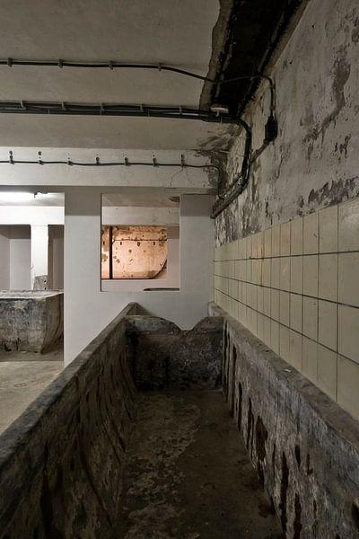 Foto im Keller einer alten Molkerei. von Therese Brals
