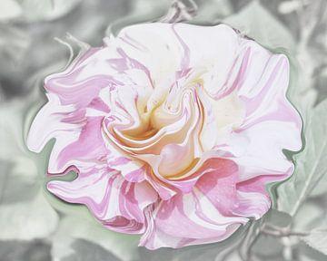 Pastel Rose von Yvonne Blokland