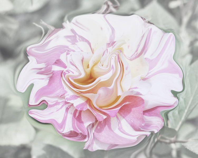 Pastel Rose van Yvonne Blokland
