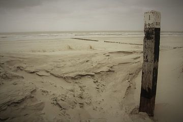 Strandwandeling van Wim Riksen