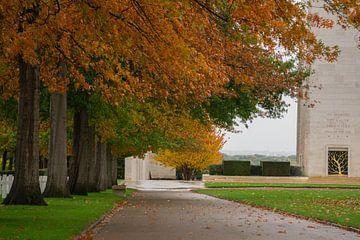 """Margraten Amerikaanse begraafplaats """"de laan"""". van Onno Alblas"""