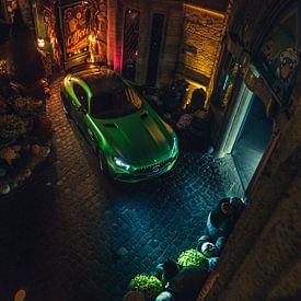 Beast of the Green Hell van Gijs Spierings