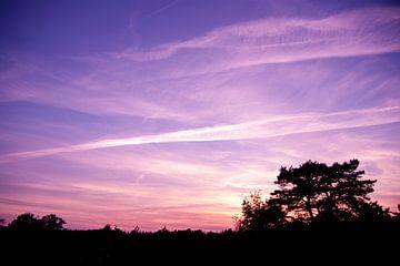 Paarse zonsondergang van Evelyne Renske