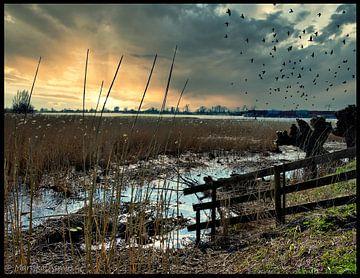 zonsopgang aan de rivier; de wereld ontwaakt van Mariska Asmus