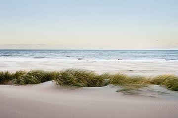 Dünen, Strand und Meer von Sjoerd van der Hucht