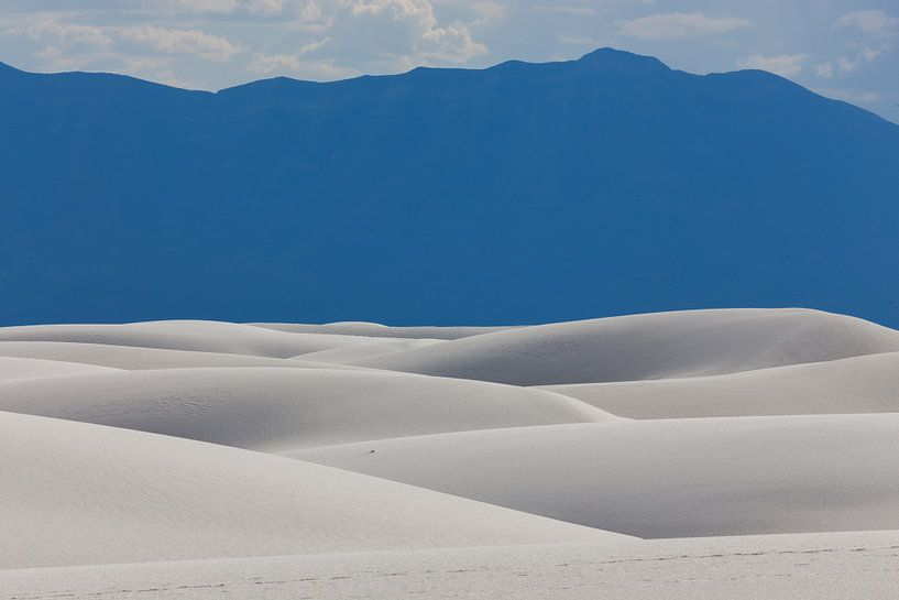 Gipsduinen in White Sands National Monument van Edwin Mooijaart